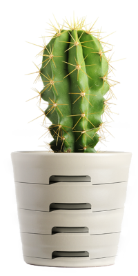 cactus-printerlade